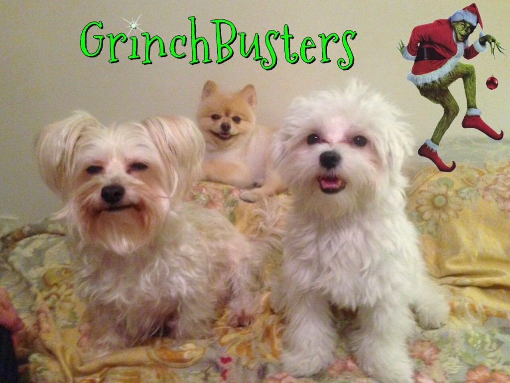 Grinchbusters