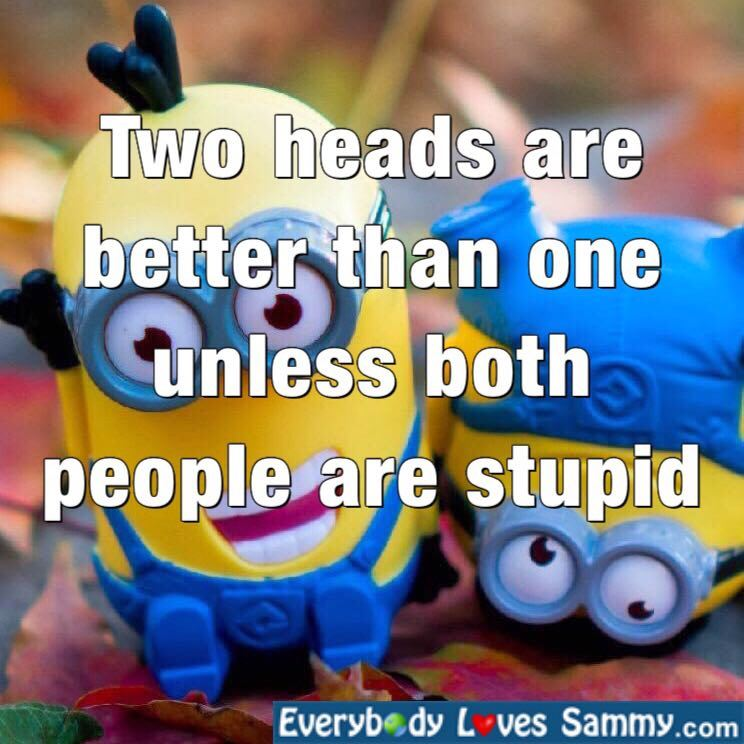 Two Heads are better than one unless, ....
